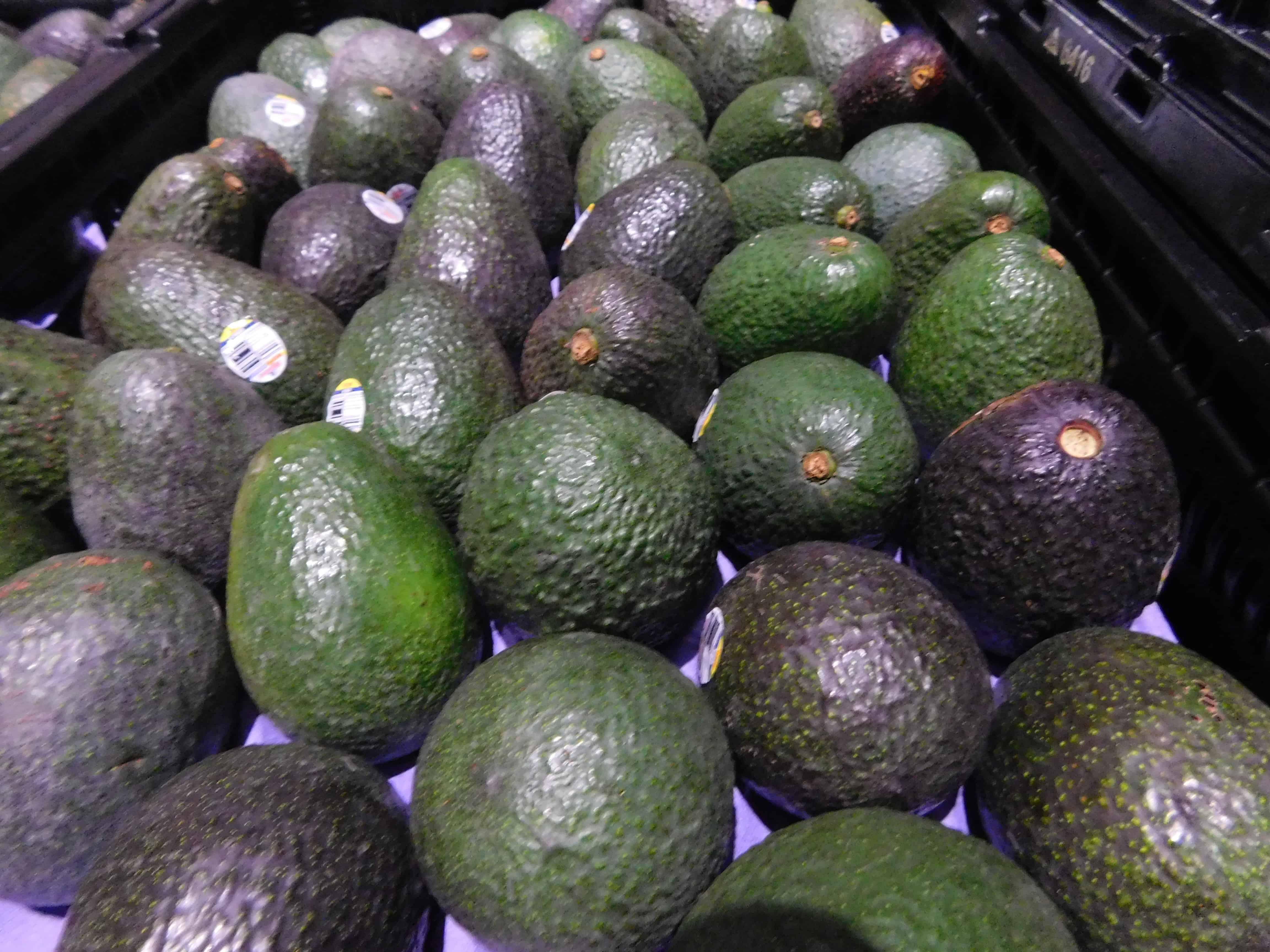 Avocado Harvest Amp Packing The Produce Nerd